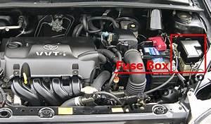 Toyota Yaris  Echo  Vitz  Xp10  1999