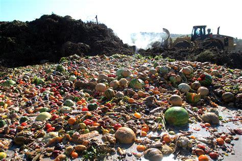 Food Waste | Schaumburg's Sustainable Future