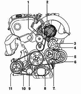 My 1999 Audi A4 Does Not Have A Serpentine Belt Diagram  And I Can U0026 39 T See Where To Take The