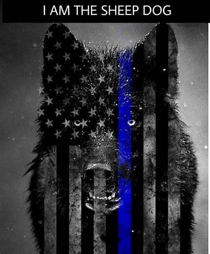 Line Thin Wallpapers Wolf Computer Flag Enforcement