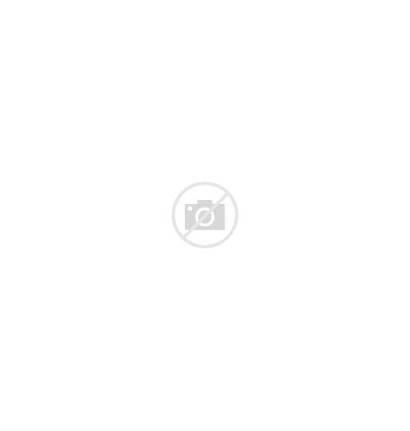 Tibet Land Chinese Consciousness Tibetan Dalai Lama