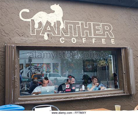 Panther Logo Stock Photos & Panther Logo Stock Images National Coffee Day Buffalo Ny Club Kippa Ring Sathorn Jobs Nz California Clubhouse Sherwood Perth City