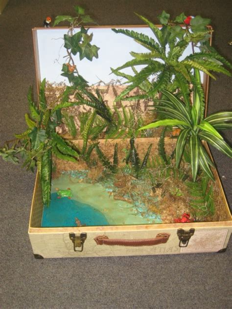 46 Best Son's 5th Grade Ecosystem Diorama Project Ideas