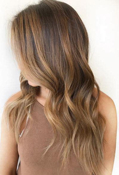natural light brown hair cinnamon brown hair color mane interest of light brown