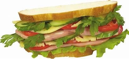 Burger Sandwich Sultan Cheeseburger Premium Ingredients Pngimg