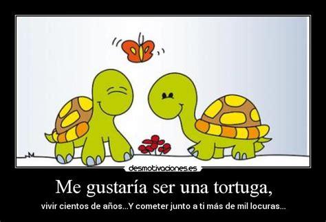 Frases de Tortuga (34 frases)