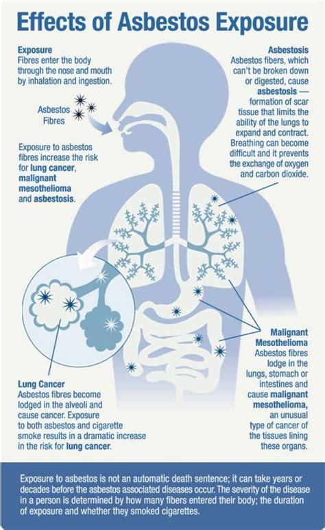 images  mesothelioma asbestos