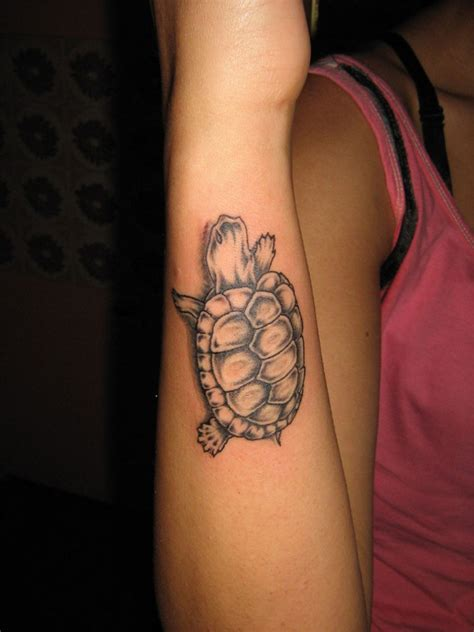 turtle tattoos designs ideas  meaning tattoos