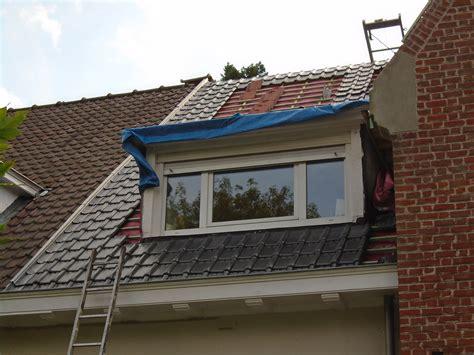 chien assis sur toiture maison design hompot