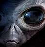 Aliens are Real - life is amazing!! - Fanpop