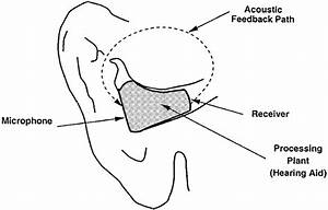 Acoustic Feedback In A Hearing Aid Inside Of A Human Ear