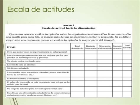 escala de alimentacion presentaci 243 n evaluaci 243 n