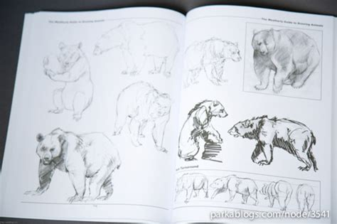 book review  weatherly guide  drawing animals