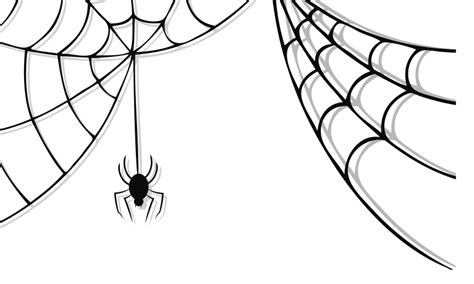 Spider Web Clip Best Spider Web Png 21468 Clipartion