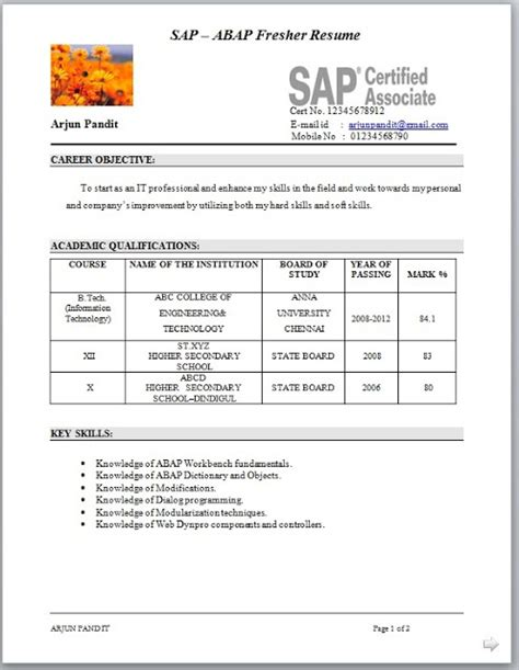 sap hr abap resume 28 images technical consultant