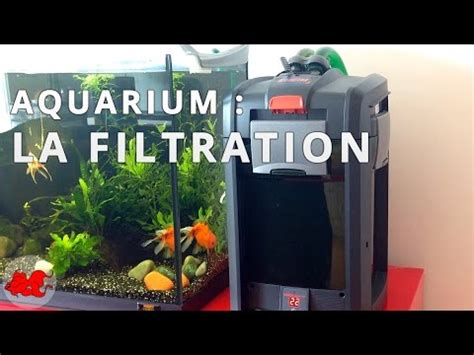 filtre a decantation aquarium aquarium la filtration