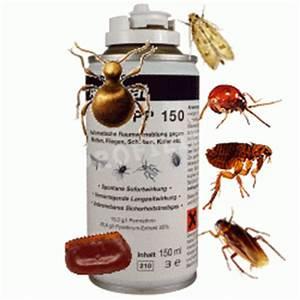 Schädlinge Im Haus : fliegen motten rattenk der gift bettwanzen bek mpfung kakerlaken wanzen schaben marder ~ Eleganceandgraceweddings.com Haus und Dekorationen