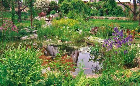 Gartenteich Tipps Fuer Die Pflege by 8 Tipps F 252 R Mehr Freude Am Gartenteich Wassergarten