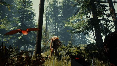 forest ps playstation  game profile news