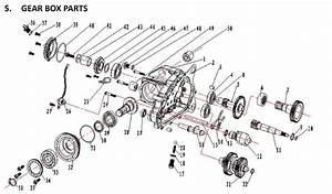 Diagram 50cc Scooter Carb Hose Diagram Full Hd Version