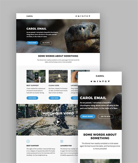 Mail Chimp Newsletter Templates by Best Mailchimp Templates To Level Up Your Business Email