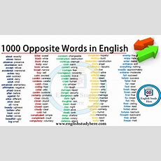 1000 Opposite Words In English  English Study Here