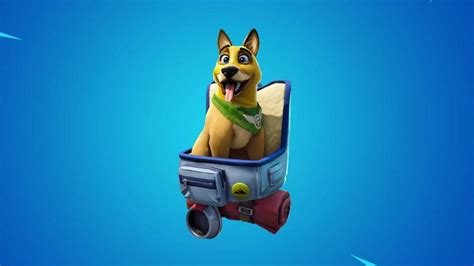 Epic Withdraws New Fortnite Dog And Apologise For Selling Him
