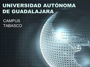 Universidad Aut U00d3noma De Guadalajara
