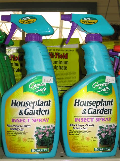 insect spray for plants control indoor plant pests early lsu agcenter