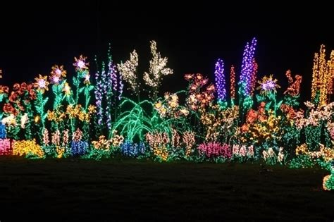 garden d lights bellevue erikhansen info