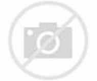 Fibonacci Numbers real life Examples 的圖像結果