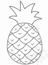 Pineapple Clipart Fruit Coloring Cliparts Clipground Coloringpage sketch template