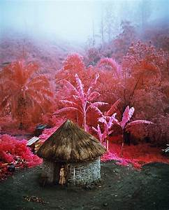 """Ben Frost Speaks to Richard Mosse— """"Your work will be ..."""