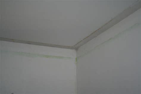 r 233 aliser une corniche lumineuse au plafond 5 messages