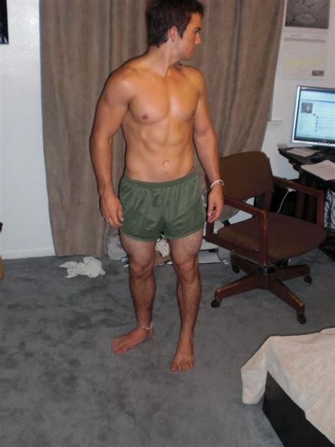 marine pt shorts boo  dogs silkies pinterest