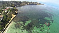 La Jolla Cove Sharks | Aug 2013 | 1080p - YouTube
