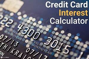 Calculating Interest Payments Credit Card Interest Calculator How Much Interest Will I