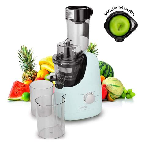 juicer apples tested juicers tried apple extractor masticating bpa comfee mint maker ice cream