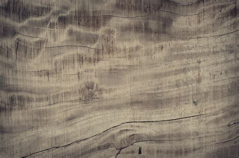 images tree nature abstract board wood antique