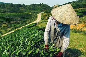 Rauchbelästigung Durch Nachbarn Tipps : reisen durch myanmar 10 tipps f r deine reise wedesigntrips ~ Lizthompson.info Haus und Dekorationen