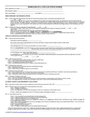 Hmda Data Collection Form by Hmda Data Collectin Form Fill Online Printable
