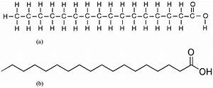 Fatty Acids  Chemical Structure Of A Fatty Acid
