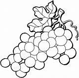 Coloring Grape Clipart Clipartbest Super Grapes sketch template