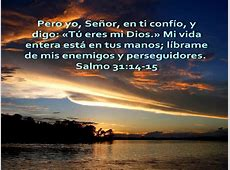 PARA EL REY DE REYES II Salmo 31un camino de vida y