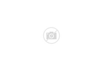 Farm Truck Clipart Scene Vector Cows Animals