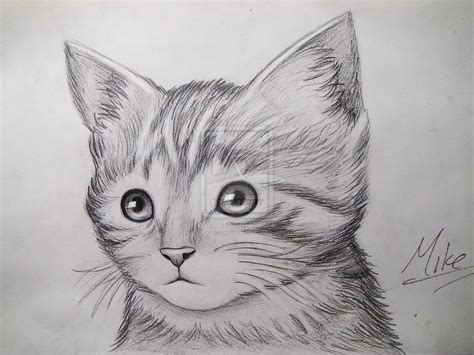 Cute Kitty Drawing By Mcorderroure Cat Pictures To Draw