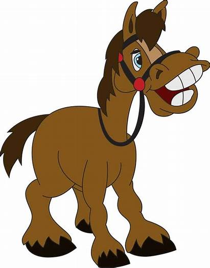 Horse Funny Jokes Puns Humor Equestrian