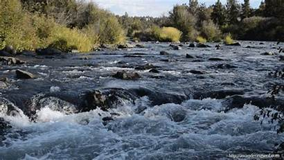 River Flowing He Wherever Gathers Leading Doesn