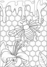 Coloring Bee Honey Adults Adult Hive Colorare Mariposas Disegni Colorear Insect Insects Printable Insekten Schmetterlinge Insectos Insetti Farfalle Detailed Erwachsene sketch template