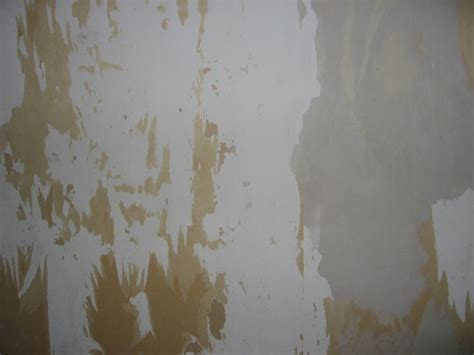 plasterboard walls    state  removing
